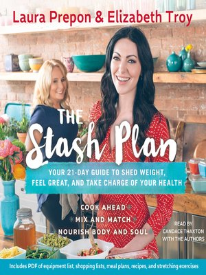 cover image of The Stash Plan