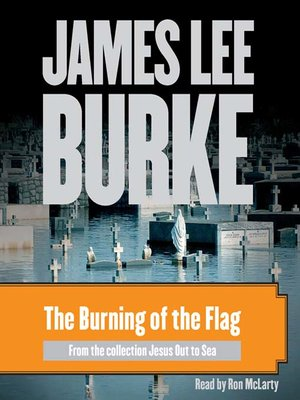 cover image of The Burning of the Flag