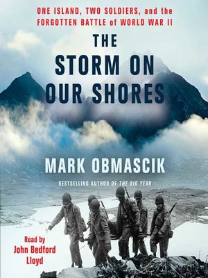 cover image of The Storm on Our Shores