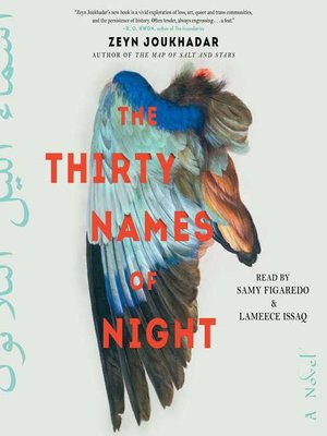 cover image of The Thirty Names of Night