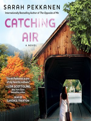 cover image of Catching Air