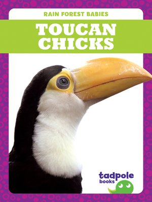cover image of Toucan Chicks