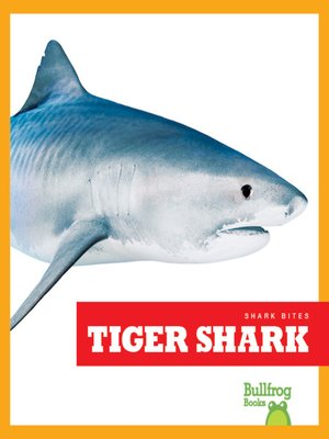 cover image of Tiger Shark
