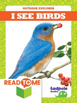 cover image of I See Birds