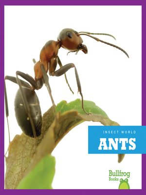 cover image of Ants