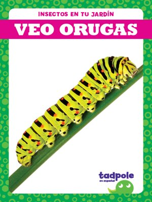 cover image of Veo orugas (I See Caterpillars)