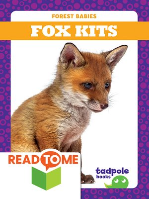 cover image of Fox Kits