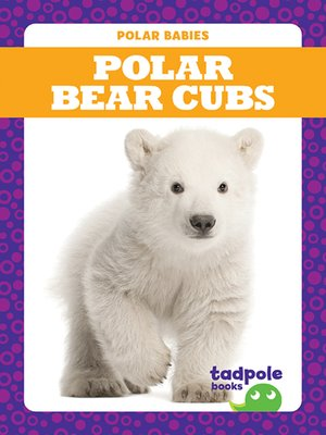 cover image of Polar Bear Cubs