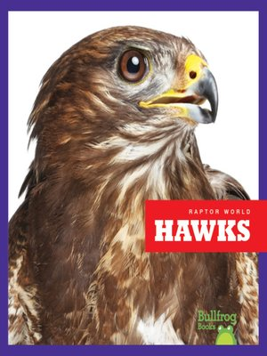 cover image of Hawks