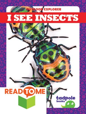 cover image of I See Insects