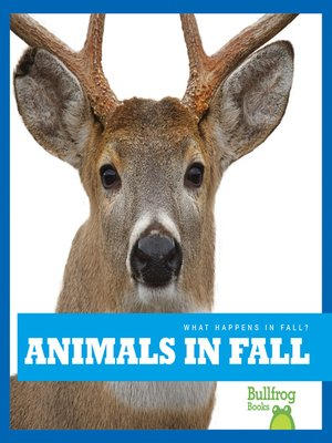 cover image of Animals in Fall