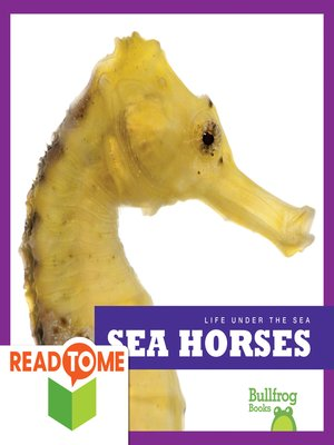 cover image of Sea Horses (Readalong Edition)