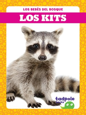 cover image of Los kits (Raccoon Cubs)