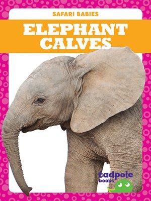 cover image of Elephant Calves