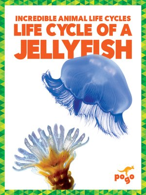 cover image of Life Cycle of a Jellyfish