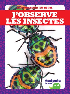 cover image of J'observe les insectes (I See Insects)