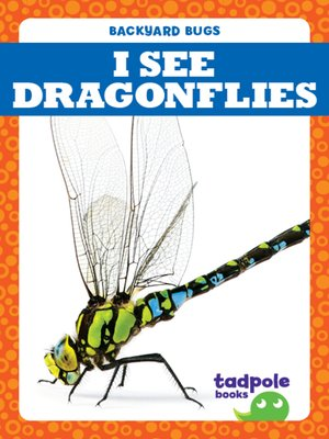 cover image of I See Dragonflies