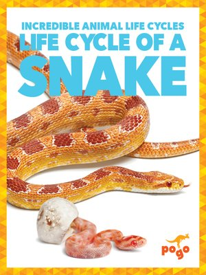 cover image of Life Cycle of a Snake