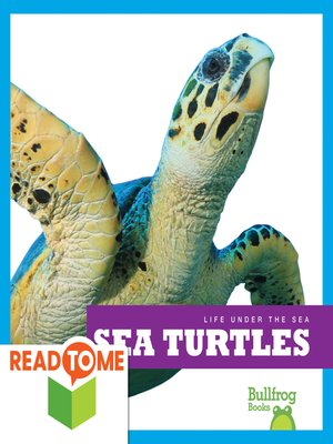 cover image of Sea Turtles (Readalong Edition)