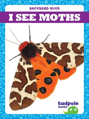 cover image of I See Moths