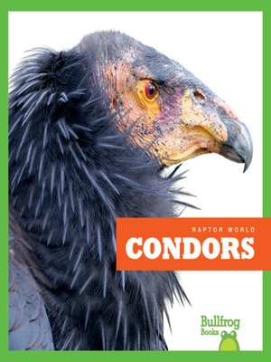 cover image of Condors