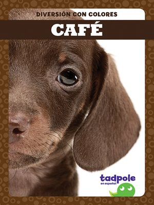 cover image of Café (Brown)
