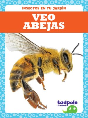 cover image of Veo abejas (I See Bees)