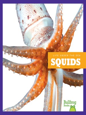 cover image of Squids