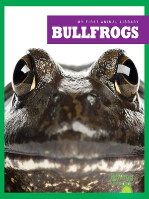 cover image of Bullfrogs