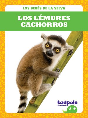 cover image of Los lémures cachorros (Lemur Pups)