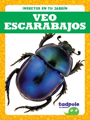 cover image of Veo escarabajos (I See Beetles)