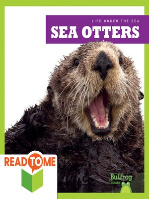 cover image of Sea Otters (Readalong Edition)