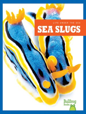 cover image of Sea Slugs