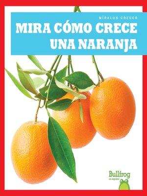 cover image of Mira cómo crece una naranja (Watch an Orange Grow)