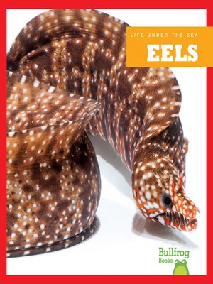 cover image of Eels