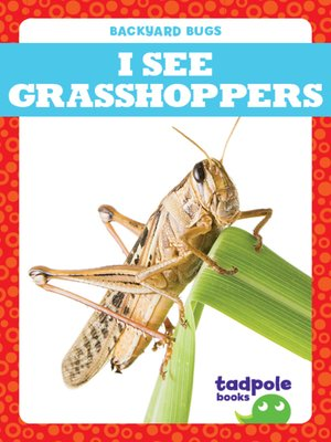 cover image of I See Grasshoppers
