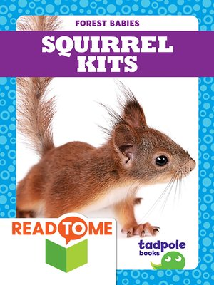 cover image of Squirrel Kits