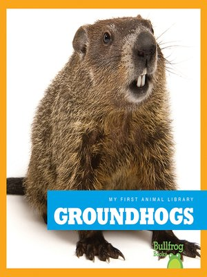 cover image of Groundhogs