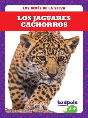 cover image of Los jaguares cachorros (Jaguar Cubs)