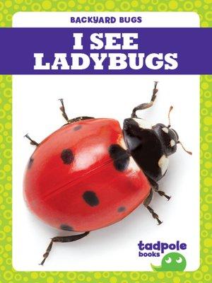 cover image of I See Ladybugs