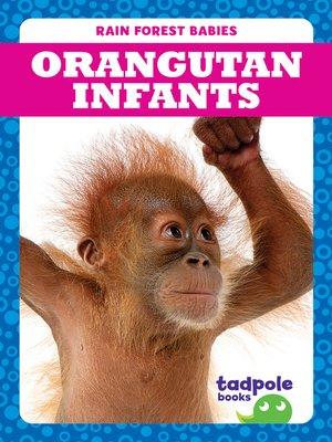 cover image of Orangutan Infants