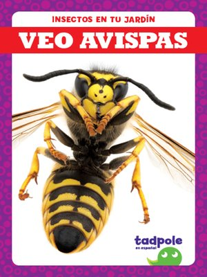 cover image of Veo avispas (I See Wasps)