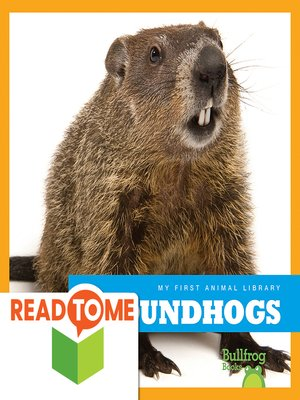 cover image of Groundhogs (Readalong Edition)
