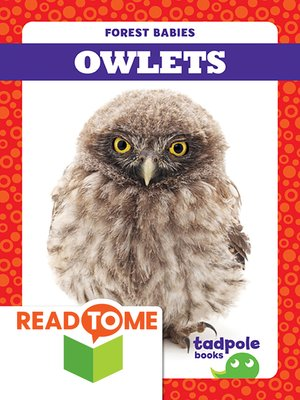 cover image of Owlets
