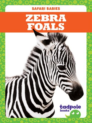cover image of Zebra Foals