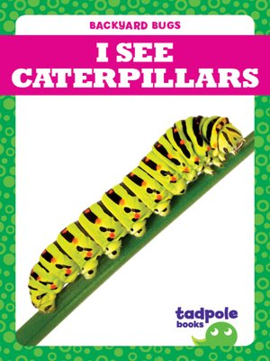 cover image of I See Caterpillars