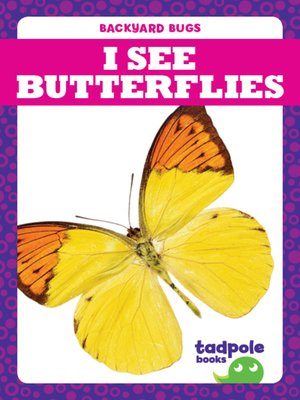 cover image of I See Butterflies