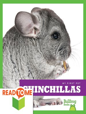 cover image of Chinchillas (Readalong Edition)