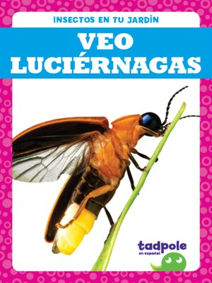cover image of Veo luciérnagas (I See Fireflies)