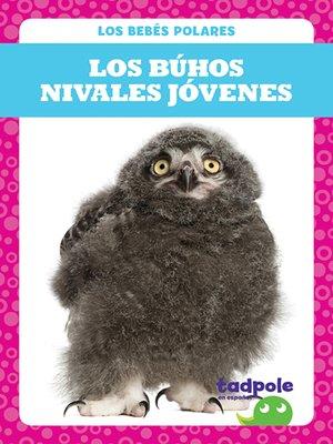 cover image of Los búhos nivales jóvenes (Snowy Owlets)
